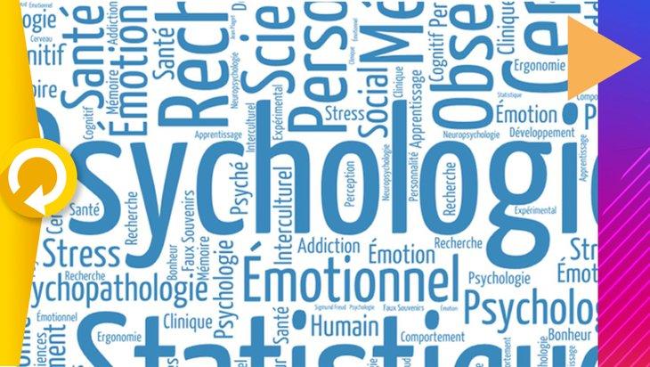 Fun Introduction A La Psychologie A L Universite